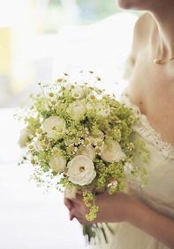 beautiful-1835116_1280.jpg